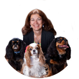 Mason Vera Paine, Dr Judy Morgan, Holistic, Pets, Dogs, Cats, Allergies