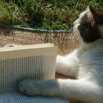 Mason Vera Paine, Millennial, Carrie Rollwagen, Books, Southern Living Magazine, Book Reviewer, Non-Fiction, Fiction