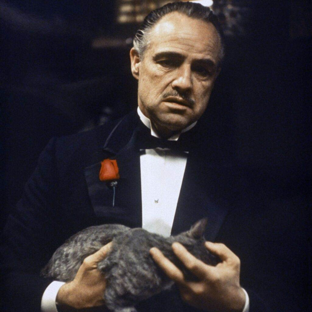 Godfather, Marlon Brando, Movie